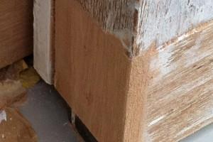 Reparaturen an Möbelstücken, Rolladenkästen, Fenster, Türen, von Einbruch- und Glasschäden